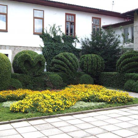 Крым Никитский Ботанический сад