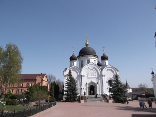 Воронеж, Задонск